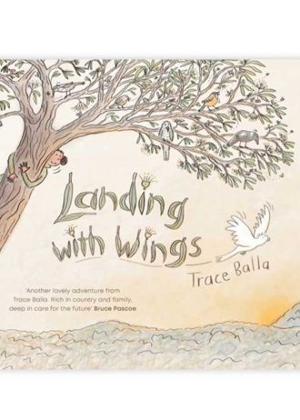 landing-with-wings-trace-balla