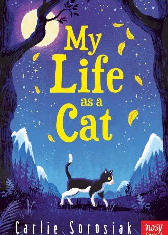 life as cat
